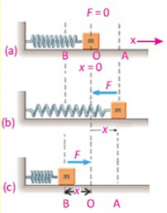 SHM of a mass-spring system