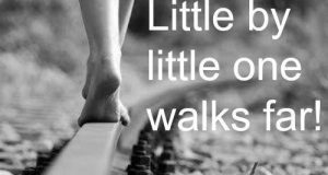 Little by Little One Walks Far